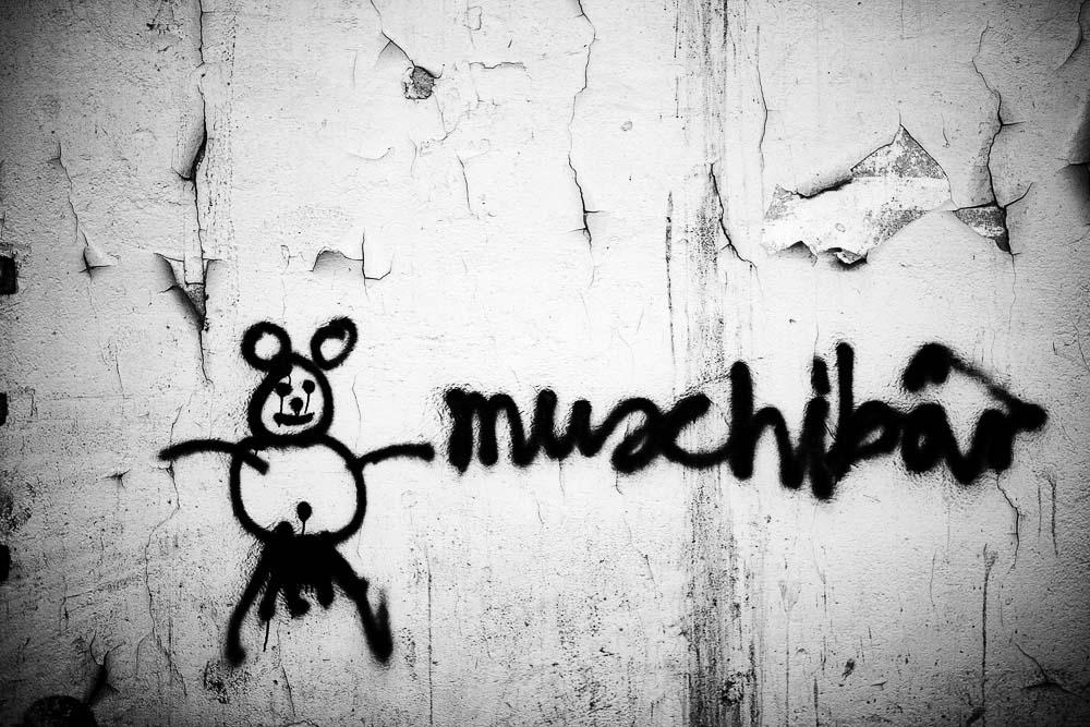 Muschibär